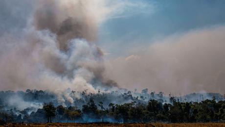 Número de incêndios registrados no Brasil aumentou significativamente em 2019