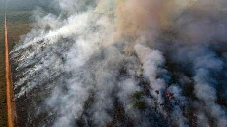 Queimadas e incêndios em 2019 foram os maiores da década