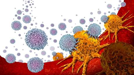 A imunoterapia usa nosso próprio sistema imunológico para reconhecer e atacar células cancerígenas
