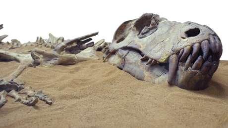 Os dinossauros foram extintos há cerca de 66 milhões de anos — mas há vários outros animais que já desapareceram da face da Terra de uma forma menos 'dramática'
