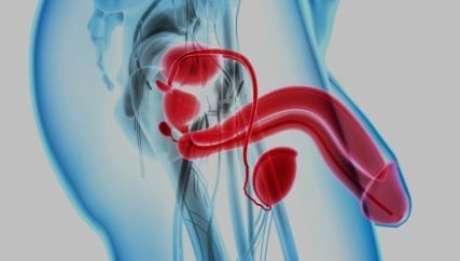 Nova técnica promete diagnosticar câncer de próstata pela urina - Foto: Shutterstock