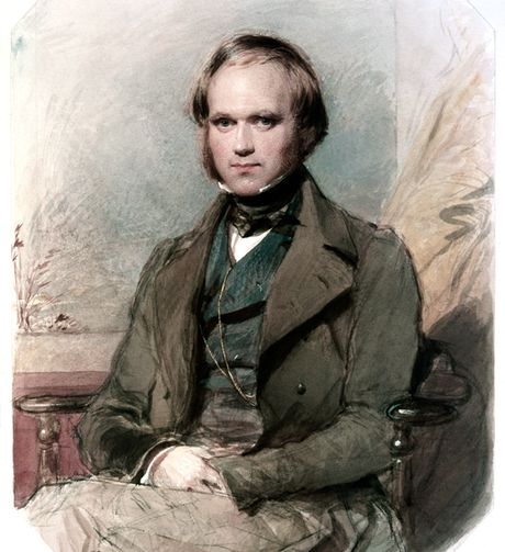 Darwin sofreu com problemas de saúde ao longo de grande parte da vida adulta, mas nunca desistiu de seus experimentos