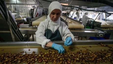 A Turquia, um dos maiores produtores mundiais de pimenta, também possui o maior consumo per capita