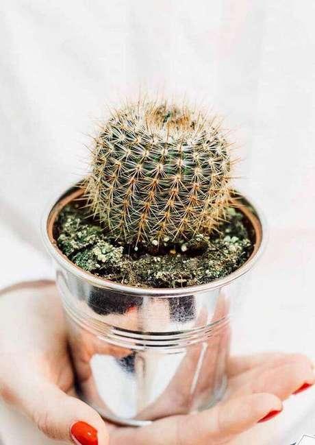 21. Utilize um vaso metálico para cultivar diferentes tipos de cactos. Fonte: Pinterest