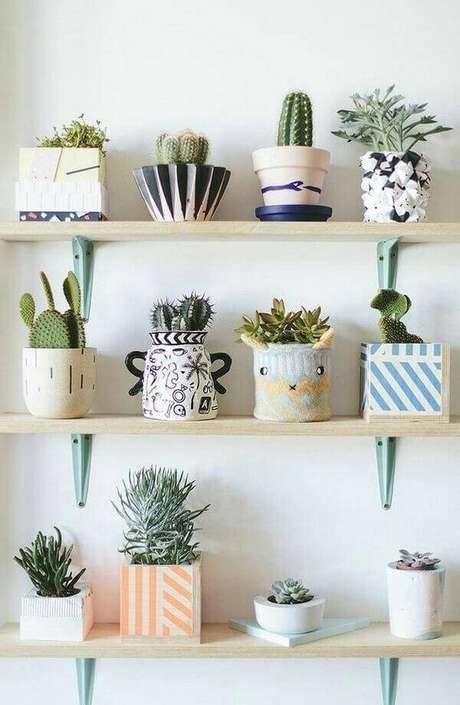 58. Utilize as prateleiras para cultivar diferentes tipos de cactos e suculentas. Fonte: Pinterest