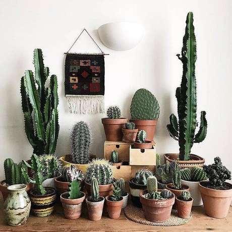 11. Separe inúmeros vasos de cerâmica e cultive diferentes tipos de cactos em casa. Fonte: Pinterest