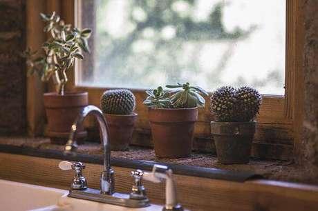 64. Aproveite o cantinho da janela para cultivar diferentes tipos de cactos e suculentas. Fonte: Pinterest
