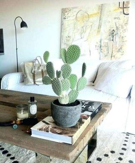 34. Decore a sala de estar com diferentes tipos de cactos. Fonte: Pinterest