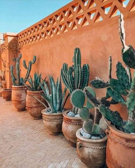 2. Cultive diferentes tipos de cactos no terraço de casa. Fonte: Casa Vogue
