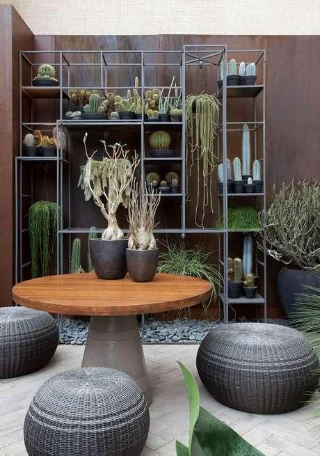 1. Jardim com mesa de madeira e diferentes tipos de cactos. Projeto por Sandra Moura