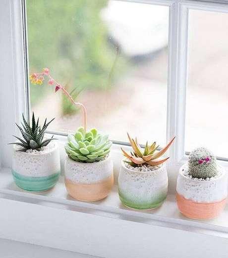 45. Diferentes tipos de cactos cultivados próximos a janela. Fonte: Pinterest