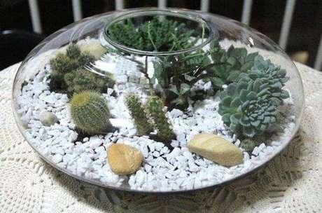 70. Vasos charmosos para cultivar diferentes tipos de cactos pequenos. Fonte: Pinterest