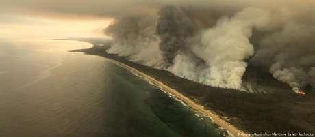 Os incêndios que atingem a Austrália desde setembro já destruíram uma superfície equivalente ao território da Irlanda