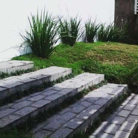 8. Utilize a pedra miracema para compor o revestimento da escada. Fonte: Pinterest