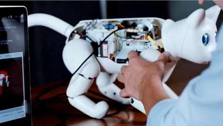 Esse gato robô pode interagir com gatos reais