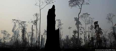 Trecho da Amazônia atingido por queimadas perto de Porto velho, em foto de agosto de 2019
