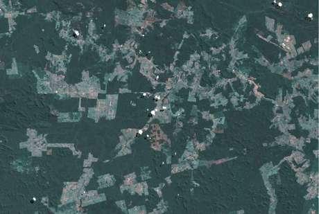 A grilagem alimenta o mercado de terras na Amazônia, gerando uma corrida incessante por novas áreas