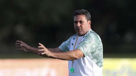 Vanderlei Luxemburgo começará a sua quinta passagem comandando o Palmeiras (Agência Palmeiras/Divulgação)