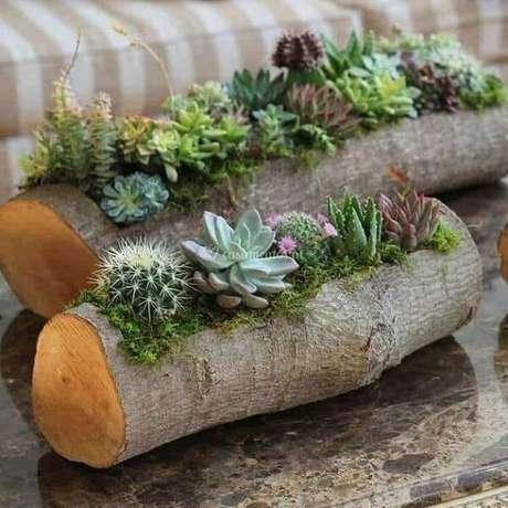 39. Floreira feita com pedaço de tronco serve de abrigo para suculentas. Fonte: Pinterest