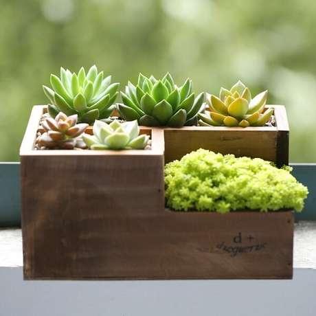 52. Modelo de mini floreira com suculentas. Fonte: Pitnerst