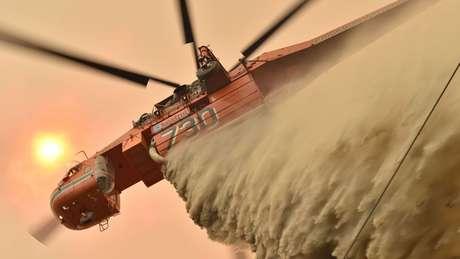 Nobre diz que, embora incêndios sazonais sejam comuns na Austrália, a frequência e a ferocidade do fogo nos últimos anos alarmaram a comunidade internacional