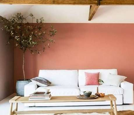 19. Cor terracota para decoração de sala de estar com planta grande e sofá branco – Foto: Casa e Jardim