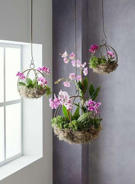 18. Plantas de sombra com flores suspensa : Orquídea – Foto: Casa e Jardim