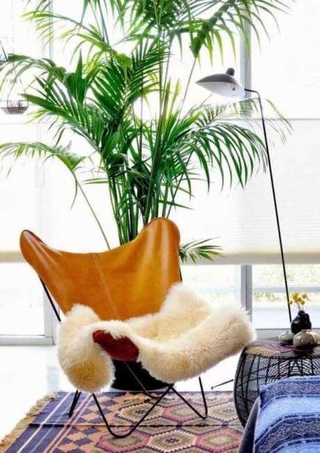 15. Plantas de sombra para sala de estar – Via: Décor Fácil