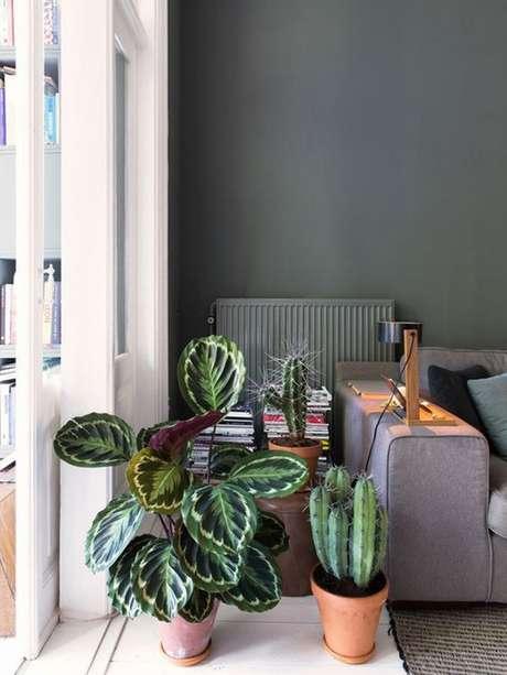 33. Plantas de sombra para casa – Foto: Follow the Colours