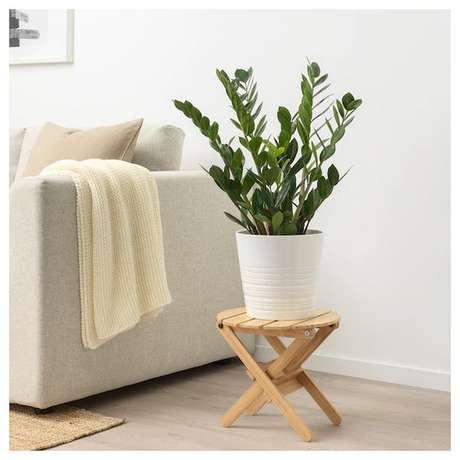 38. Plantas de sombra para decoração de casa: Zamioculca – Foto: Ikea
