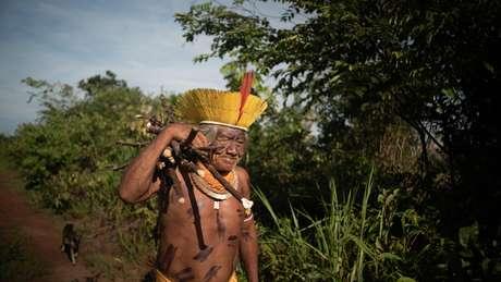 O cacique Bedjai Txucarramãe carrega ramas de mandioca na Terra Indígena Capoto Jarina, em Mato Grosso
