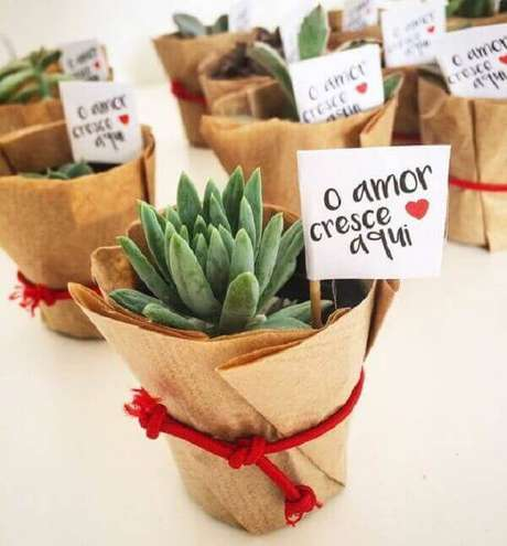 42- Os vasinhos com suculentas fazem a decoração de noivado durante a festa e são entregues aos convidados como lembrancinhas. Fonte: Pinterest