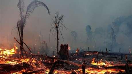 35% do desmatamento na Amazônia entre agosto de 2018 e julho de 2019 se deu em terras públicas não destinadas, categoria visada por grileiros