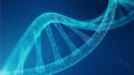 DNA de grupo 'fantasma' representa entre 2% e 19% da ancestralidade genética dos africanos ocidentais modernos
