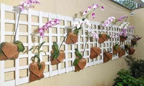 5- Você também precisa aprender como cuidar de orquídea na treliça de orquídeas na decoração de parede.