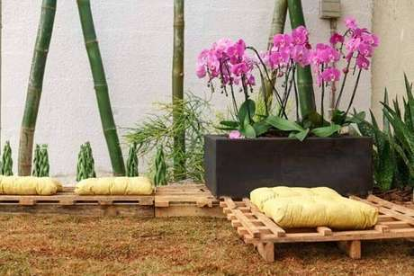 26 – Como cuidar de orquídea na jardineira no quintal.