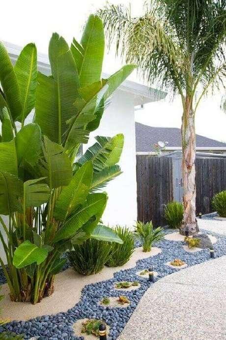 plantas grandes para jardim residencial com caminho de pedras Foto Backyard Mastery