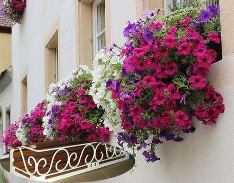 70. Floreias coloridas – Via: Horizontal