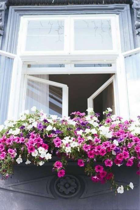64. Violetas na janela – Via: Pinterest