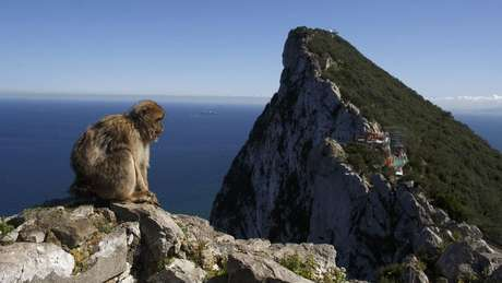 Finlayson diz que os penhascos íngremes de Gibraltar ajudaram a preservar os restos mortais dos neandertais