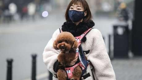 A maioria dos casos de coronavírus foram registrados na China, mas outros países também estão combatendo o vírus