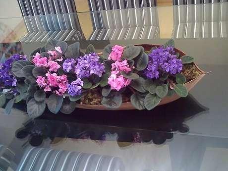 22- O arranjo da sala de jantar foi realizado com mudas de violetas dentro de folha seca. Fonte: Casa Com Decoração