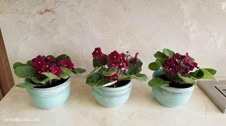 25- Na decoração da sala de jantar o jogo de três vasos com violetas foram perfiladas sobre o aparador. Fonte: Jeito de Casa