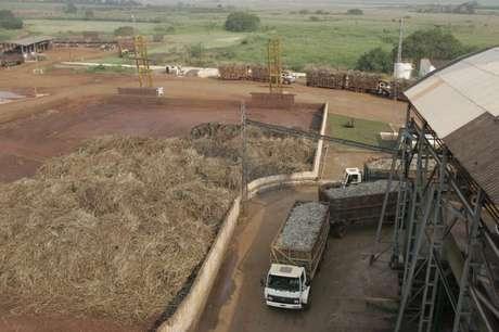 Usina de processamento de cana em Sertãozinho (SP)  08/09/2005 REUTERS/Paulo Whitaker