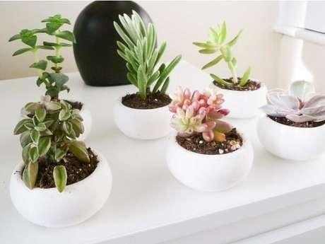 61. Vasos para suculentas brancos deixam o ambiente mais clean – Foto: Via Pinterest