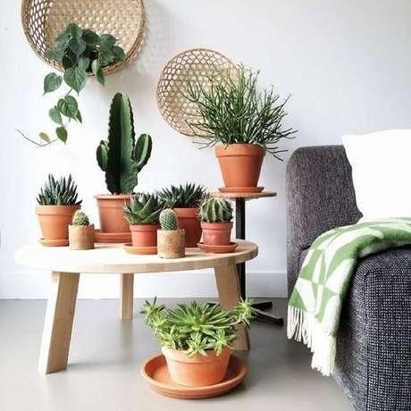 1. Os vasos para suculentas ficam bem em todos os ambientes – Foto: Via Pinterest