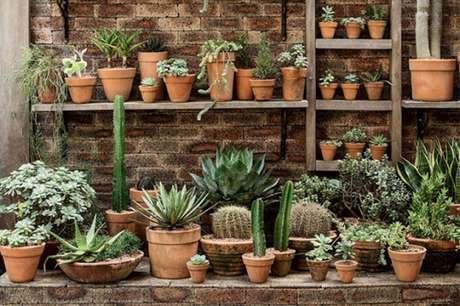 14. Um jardim externo com vasos de diferentes tamanhos e espécies de suculentas – Foto: Casa e jardim