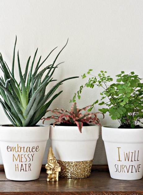 15. Vasos com mensagens trazem mais personalidade ao ambiente – Foto: Casinha arrumada