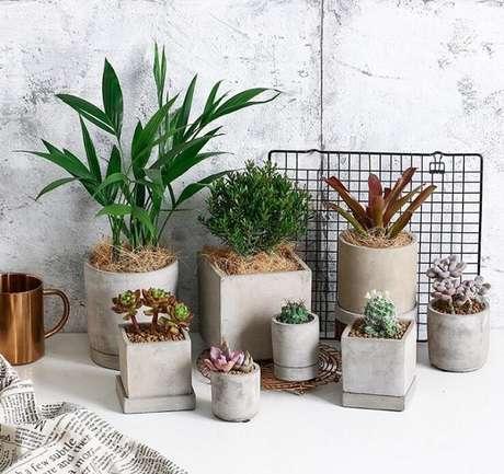 5. Os vasos para suculenta de cimento podem ser de diversos formatos – Foto: Via Pinterest