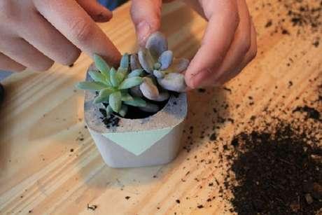 2. Você pode fazer seus próprios vasos para suculentas em casa – Foto: Caixa Cosmo